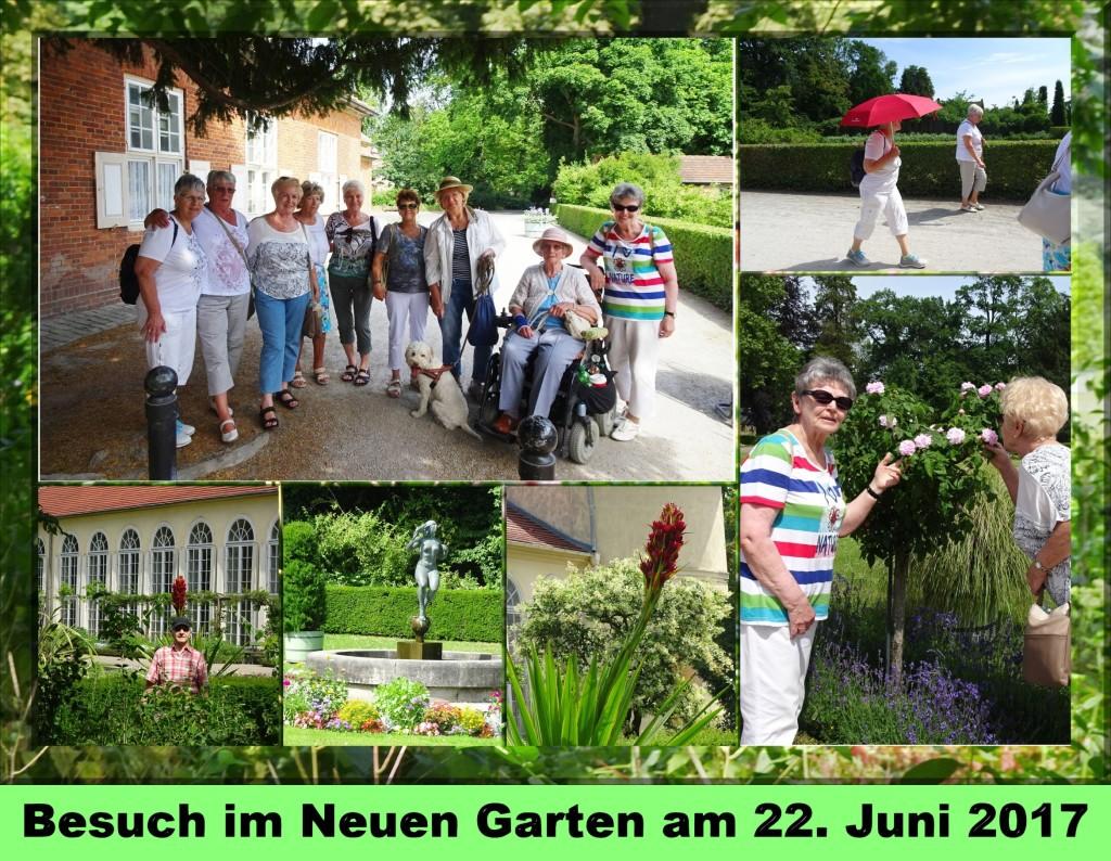 2017 Neuer Garten01