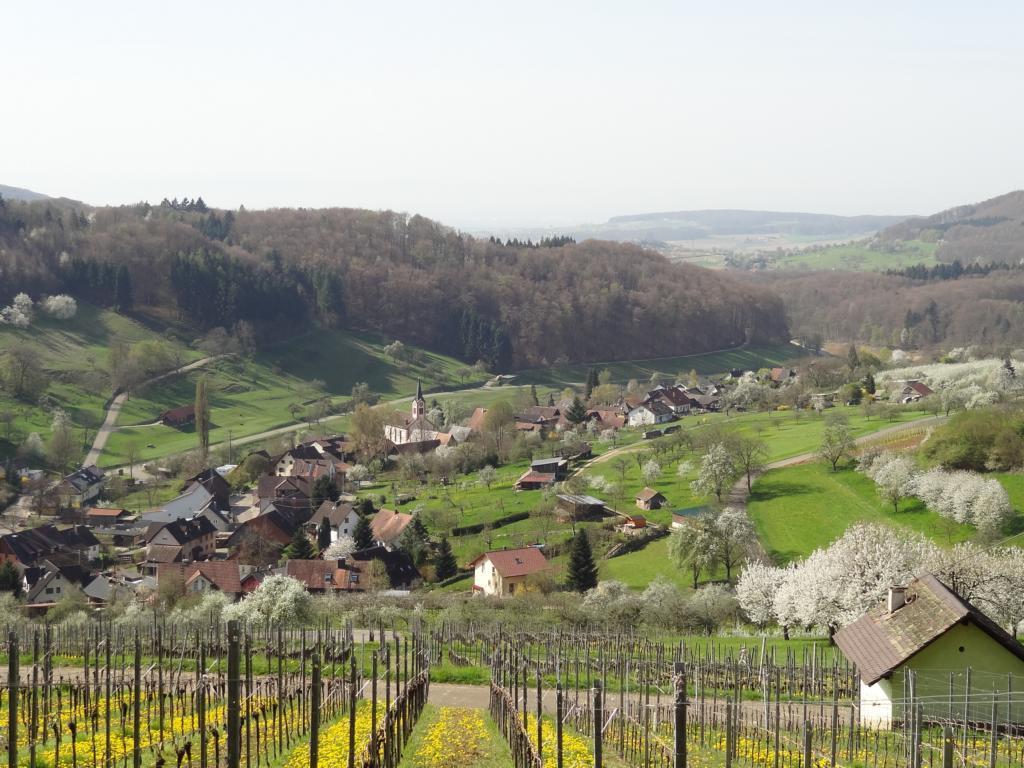 Eggener Tal