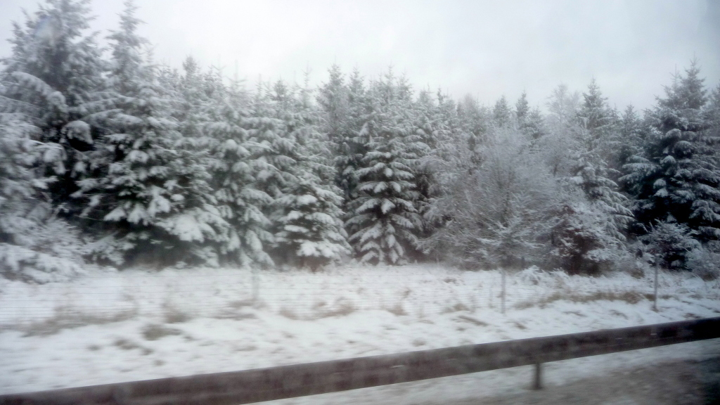 Schnee an der Autobahn