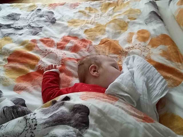 Zoey schlaft