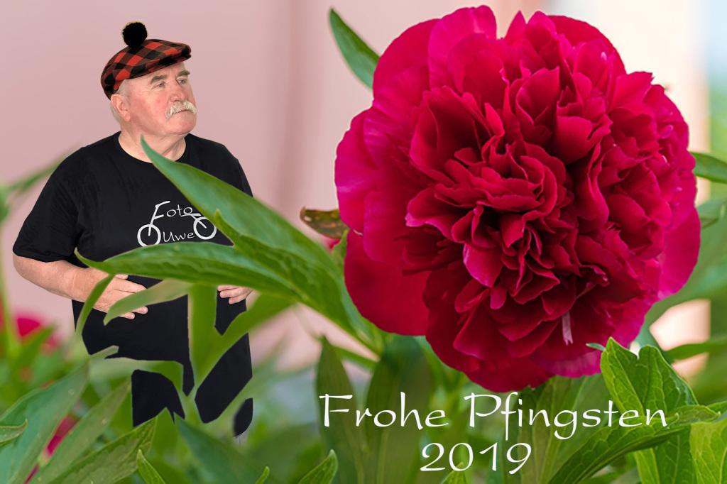 Frohe Pfingsten 2019