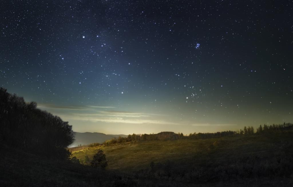 Nachthimmerl kurz vor dem Sonnenaufgang