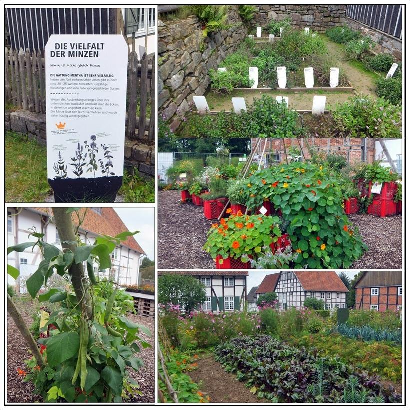 Kräuter und Gärten