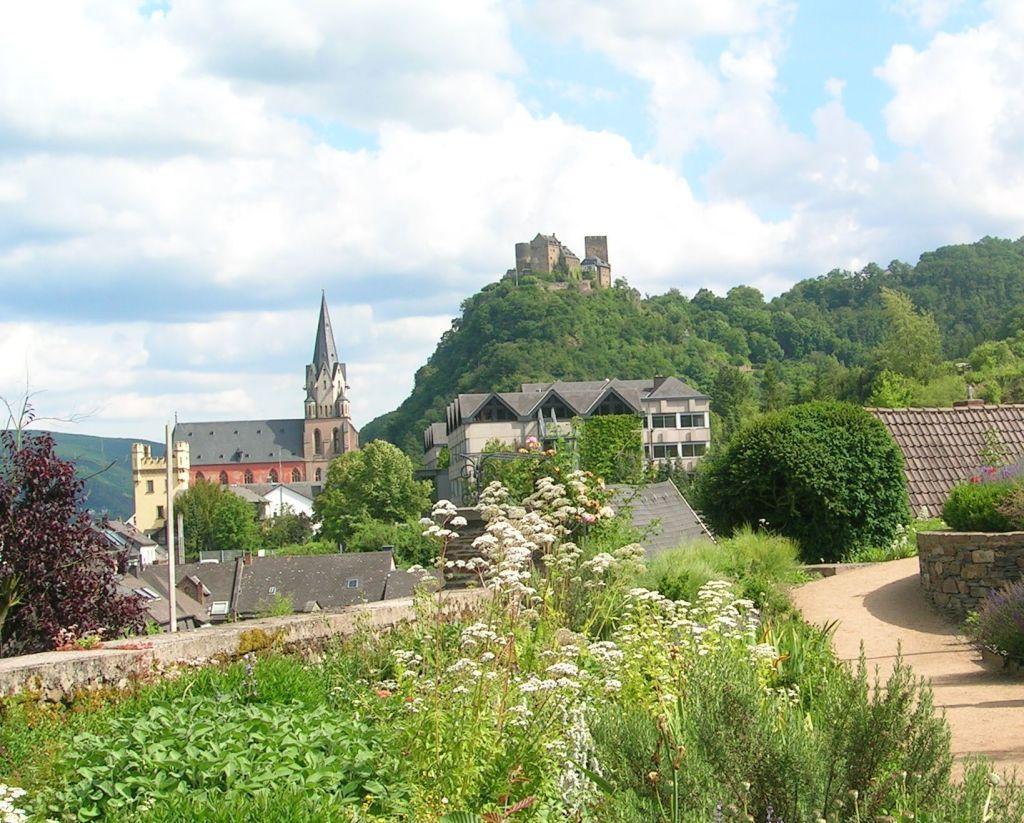 Oberwesel_begehbare Stadtmauer_fidelis45