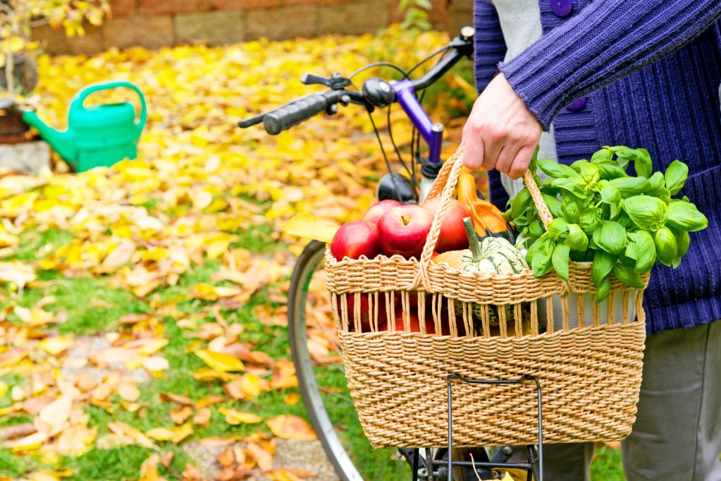 Frau mit Einkaufstasche Obst und Gemüse