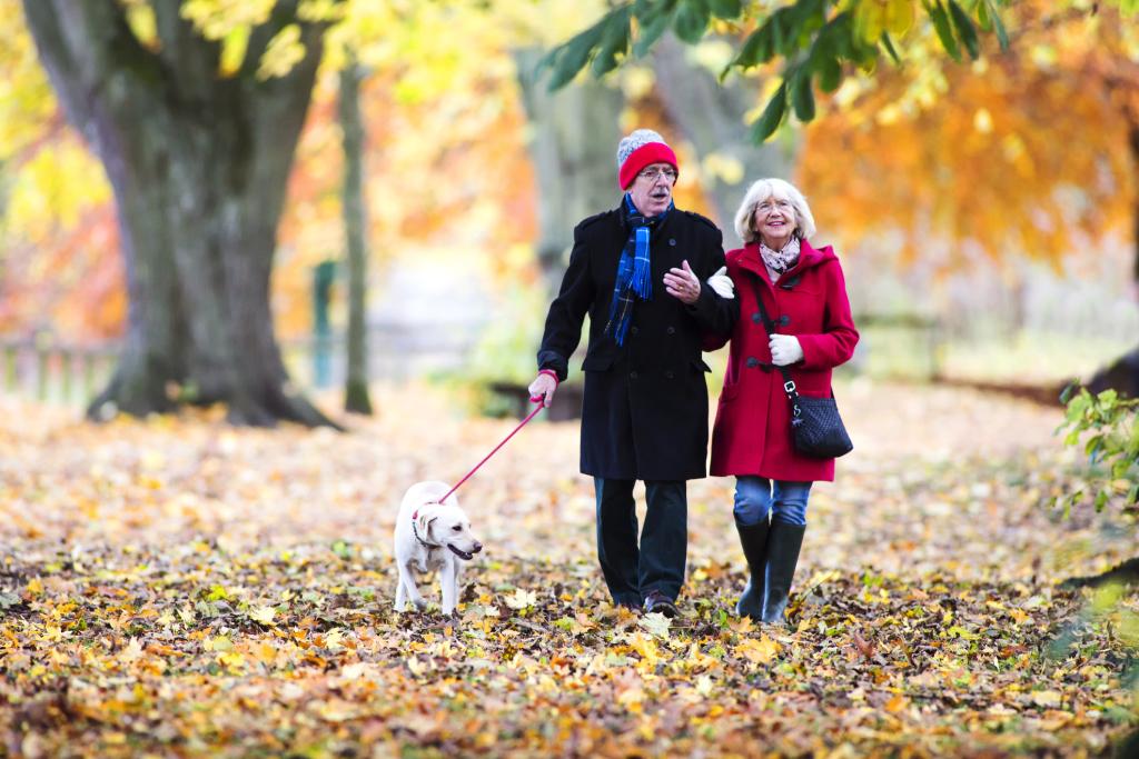 Herbstspaziergang älteres Paar