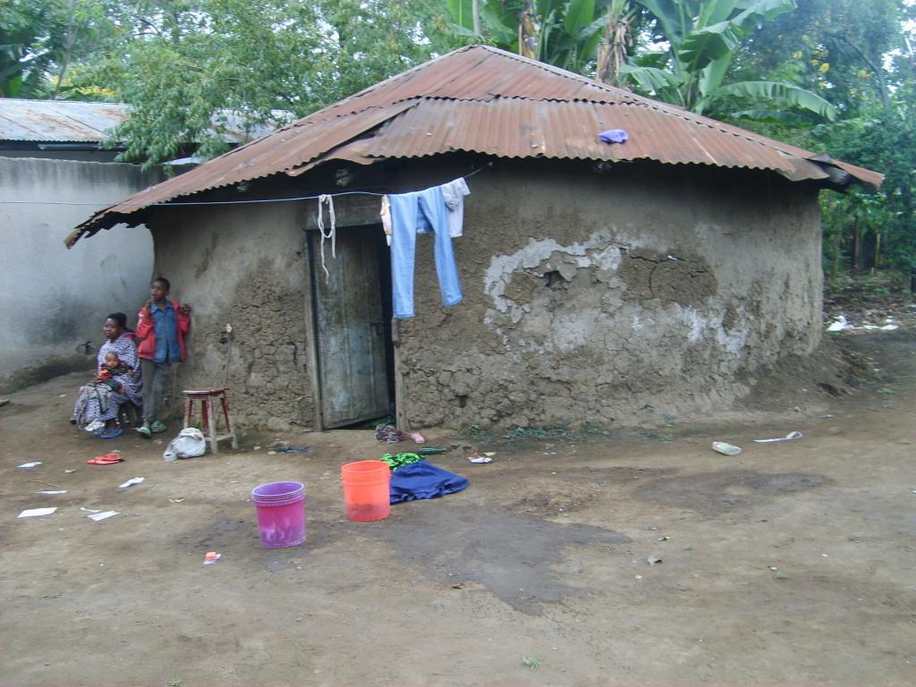 Ursua in Tansania 2008