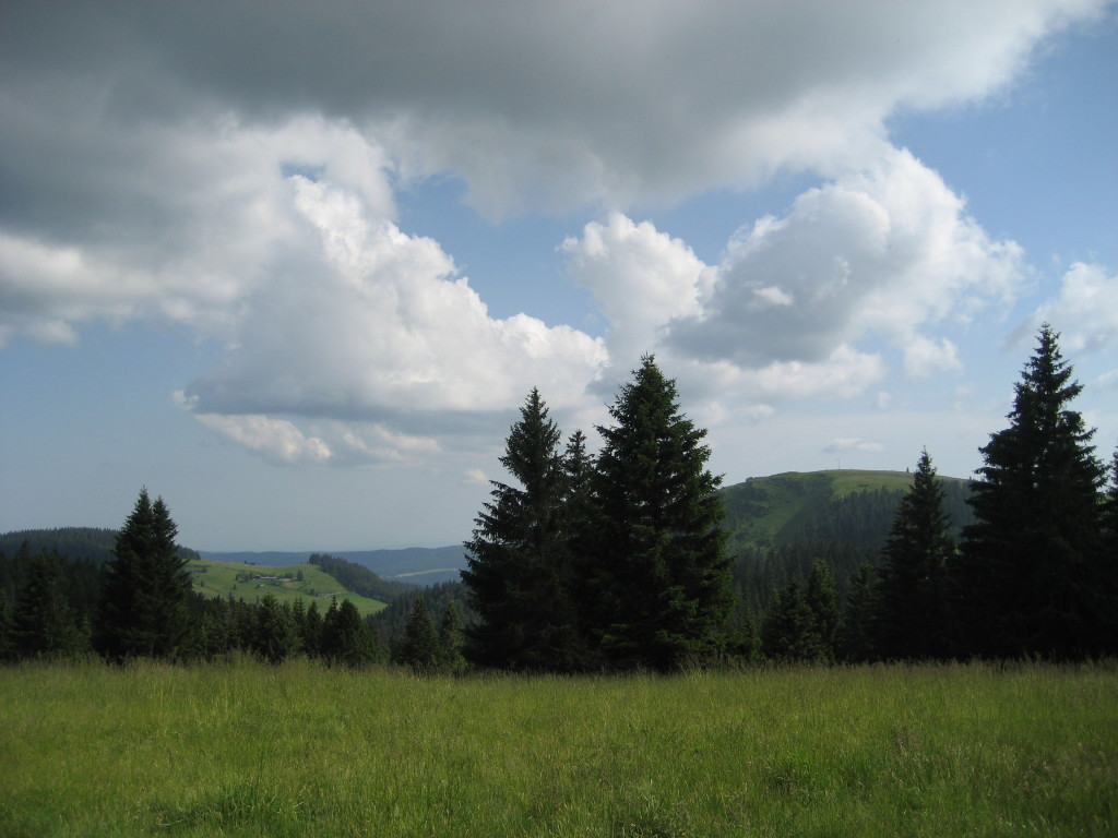 Herzogenhorn 31