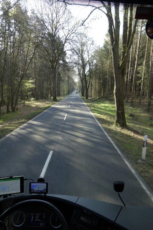 Alleen in Brandenburg_nina364