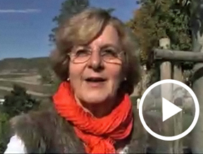 Standbild Video Wandertag mit Orthoexpert, © Feierabend.de