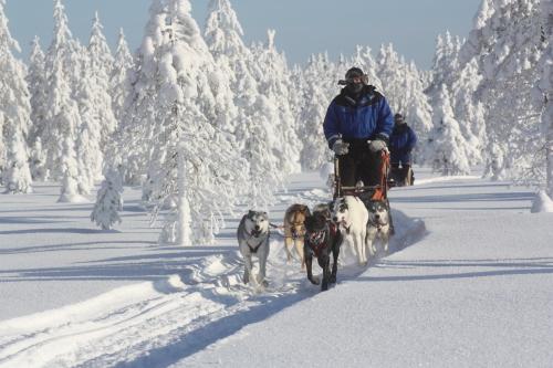 Finnjan Husky Safari WI Bild IMG_4736.jpg