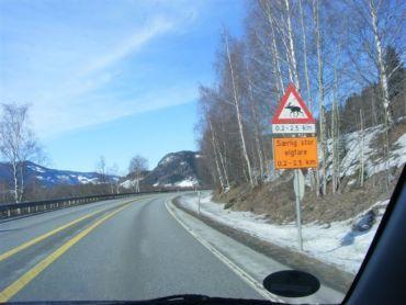 Scout Bericht Norwegen Bessheim