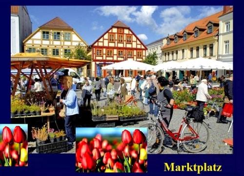 Waren-Mueritz2.neumarkt11.jpg