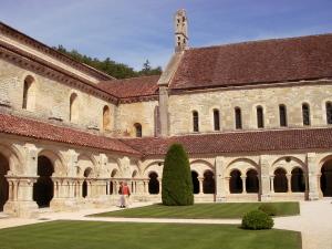 Burgund 24