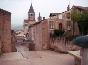 Burgund 31