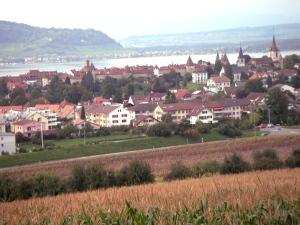 Burgund 33