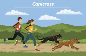 Zwei Laufende Menschen und Hunde