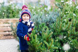 Kleiner Junge beim Weihnachtsbaumkauf