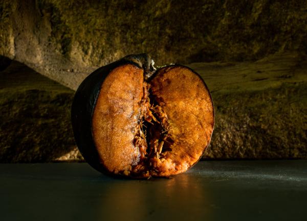 Angeschnittener Apfel mit brauner Verfärbung