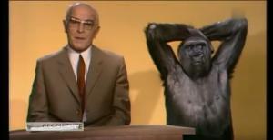 Bernhard Grzimek mit einem Schimpansen in der Sendung