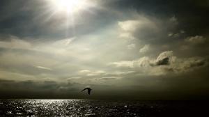 Loslassen und sich Augenblicke der Ruhe gönnen