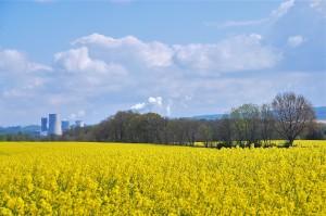 DSC_0073.JPG Landschaft mit Kohlekraftwerk