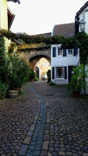 20191010_094915.jpg Impressionen aus Freinsheim