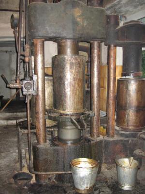 Walnuss-Ölmühle 3