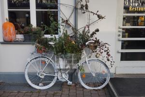 Blummenrad in Heiligendamm