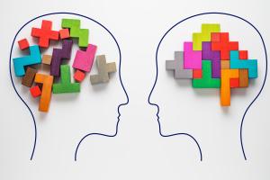 Bauklötze in zwei Köpfen stellen Gehirn dar