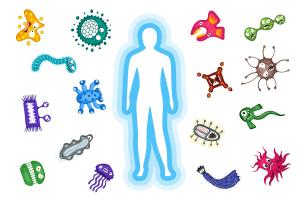 Immunsystem. Körper reflektieren Bakterien und Virusinfektion Angriff