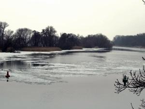 Nationalpark Unteres Odertal im Winter