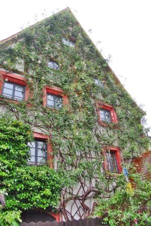 Bamberg 067.JPG