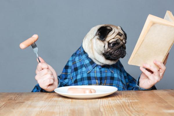 Mensch mit einem Hundekopf, der eine Wurst in der Hand hält und liest