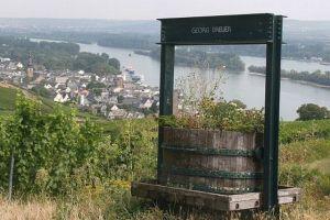 Rheingau004