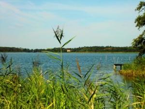 Am idyllischen Großen Plessower See,hat der Fischer u.a.sein Angelrevier