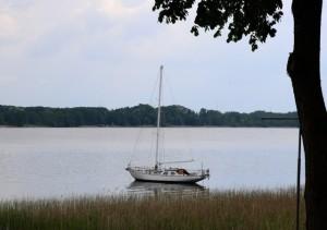 Segelboot auf dem Scharmützelsee