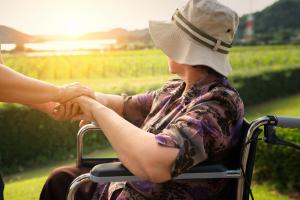Frau im Rollstuhl auf Sonnenuntergang in Weinbergen blickend