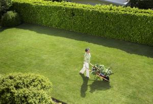 Frau mit Schubkarre im  Garten