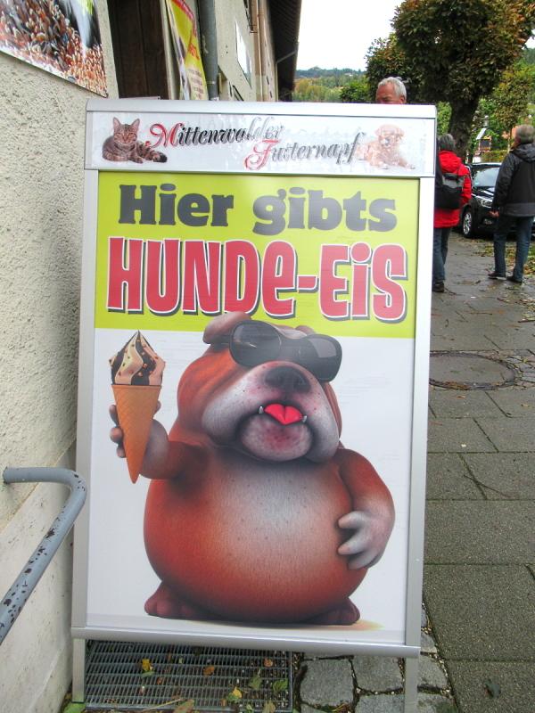 Allgäu 2020 bear (24).jpg