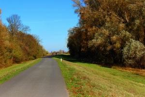 Schöne Fahrradtour n. Schwedt und weiter zur Oder
