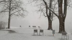 Kleiner Winter Bern 2019