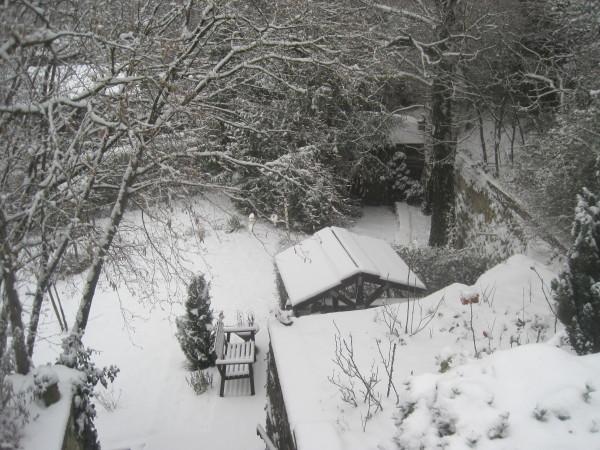 Das Jahr fing mit Schnee an
