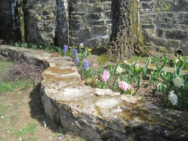 Der Frühling kündigt sich an