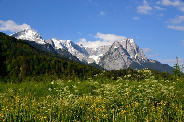 Herrliches Alpenpanorama zum Wettersteingebirge