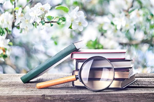 Bücherstapel mit Lupe vor Blütenbaum