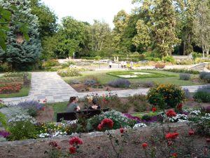 Rosengarten_fidelis45