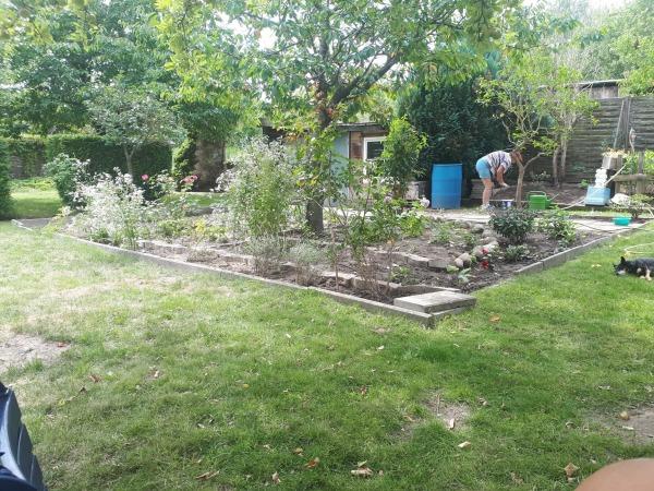 mein neuer Garten.jpg