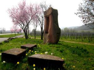 Mandelblüte in der Pfalz
