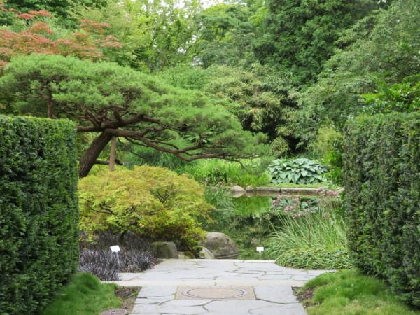 b38_HH_Botanischer_Garten.JPG